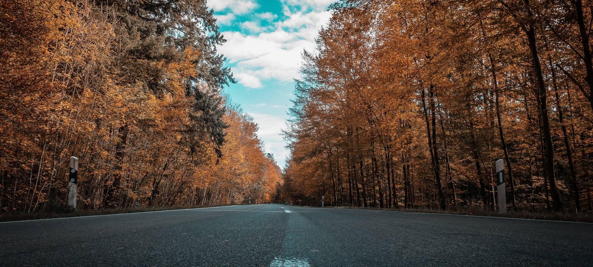 Jesienna odezwa Komendy Miejskiej Policji do parafian